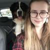 Hondentoilettage aan huis in Berlare (9290) - Sarah