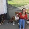 Hondentoilettage aan huis in Herk-De-Stad (3540) - Marijke