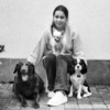 Hondentoilettage aan huis in Zwijnaarde (9052) - Laurine