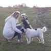 Hondentoilettage aan huis in Lubbeek (3210) - Hilde